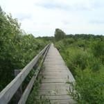 Мост через Лух
